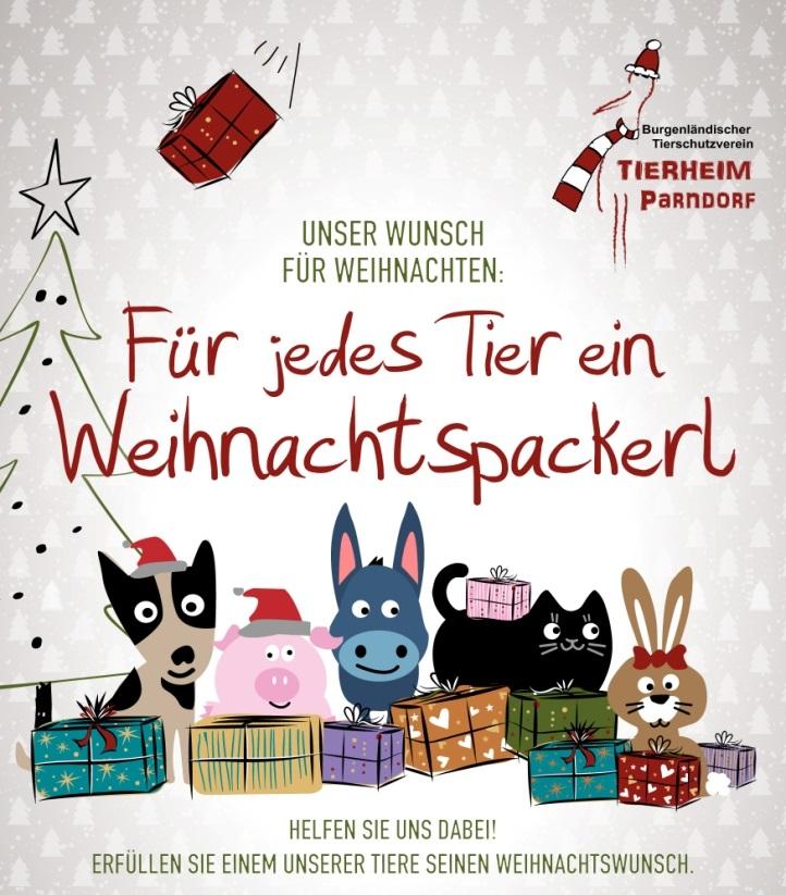 Tierheim Weihnachtsaktion